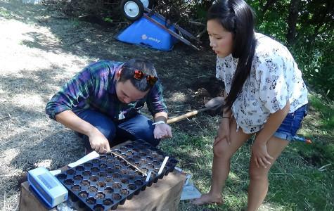 Garden Club grows on campus