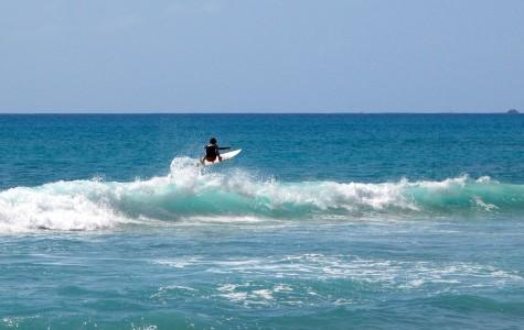 Chaminade's North Shore Surfer