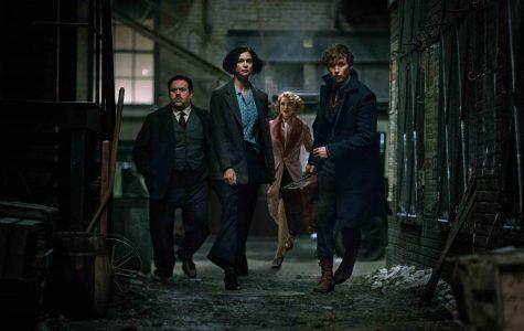 'Fantastic Beasts' a fantastic start to magical series