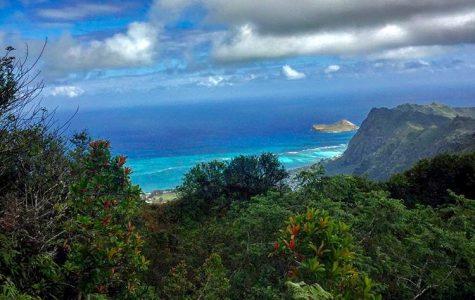 Exploring Oahu: Kuliouou Ridge Trail