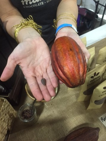 The Cocoa pod and the nib inside the seed.