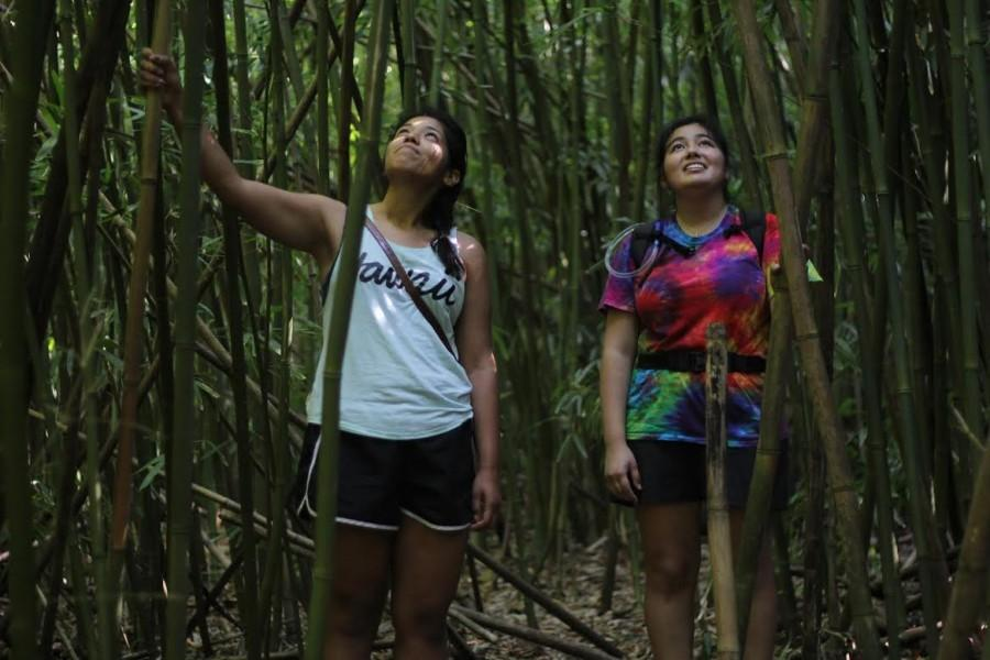 Lisa Marquez (left) and Christela Perez (right) are amazed by the alluring bamboo forest at Judd's Trailhead.