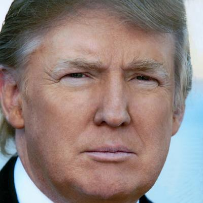 Donald Trump is the leader among the Republican  presidential candidates and the likely individual to receive the party's nomination.