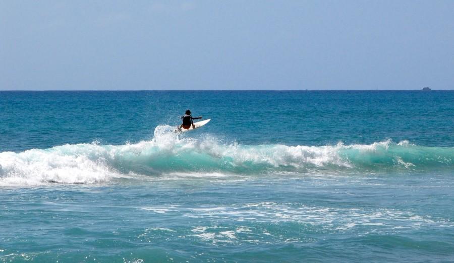 Chaminade%27s+North+Shore+Surfer