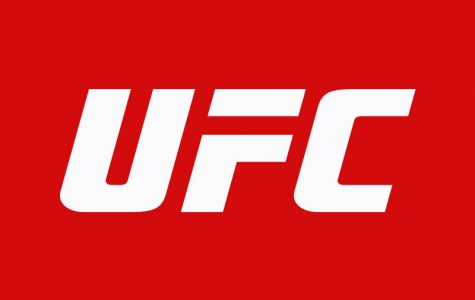 Top 10 UFC fighters of all time