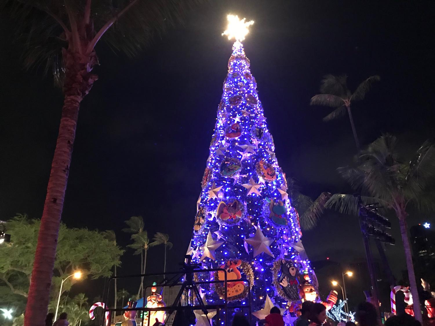 the city holiday tree is adorned with wreaths and silver stars