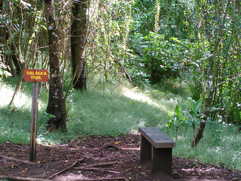 The start of Ualaka'a trail.