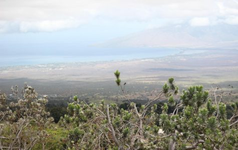 Top Places to Visit on Maui