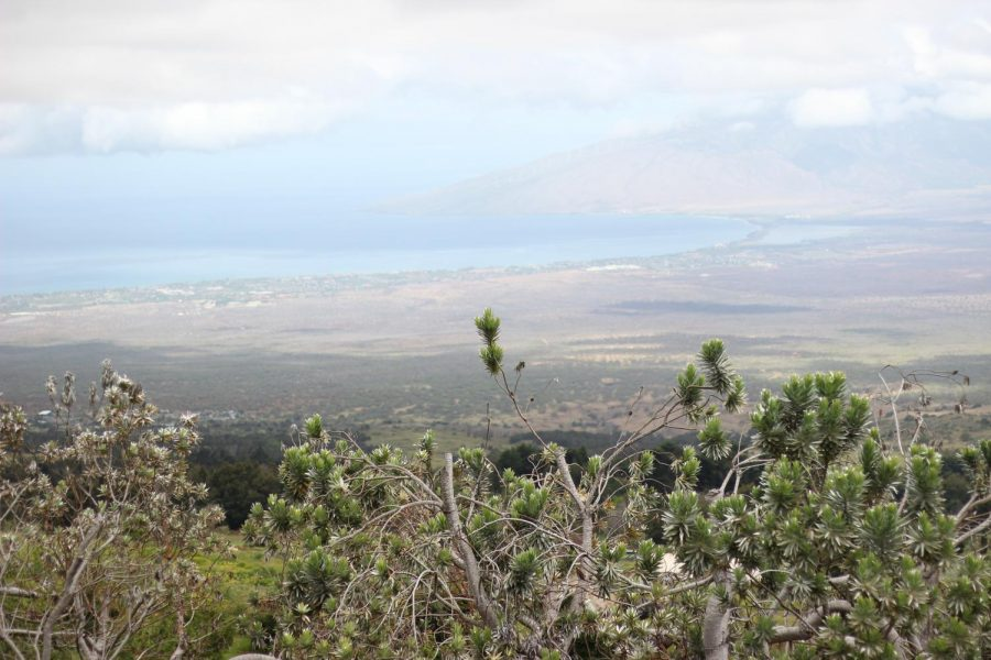 Travel to Maui to enjoy the magnificent views from the mountans to the ocean.