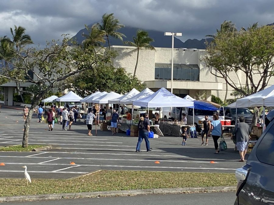 With Hawaii slowly loosening restrictions by opening shopping malls and retail stores. Many are eager to go outside as well as some who are hesitant to go.