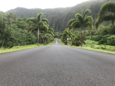 The entrance gate of Hoomaluhia Botanical Garden in Kaneohe is a popular area for pictures.