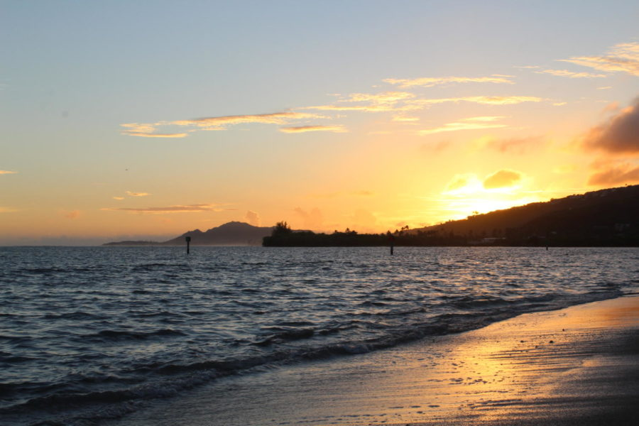 6 Solutions Hawaii Should Do to Lower Covid Cases